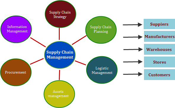 Key Features Of Supply Chain Management Software