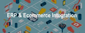 ERP & Ecommerce Integration