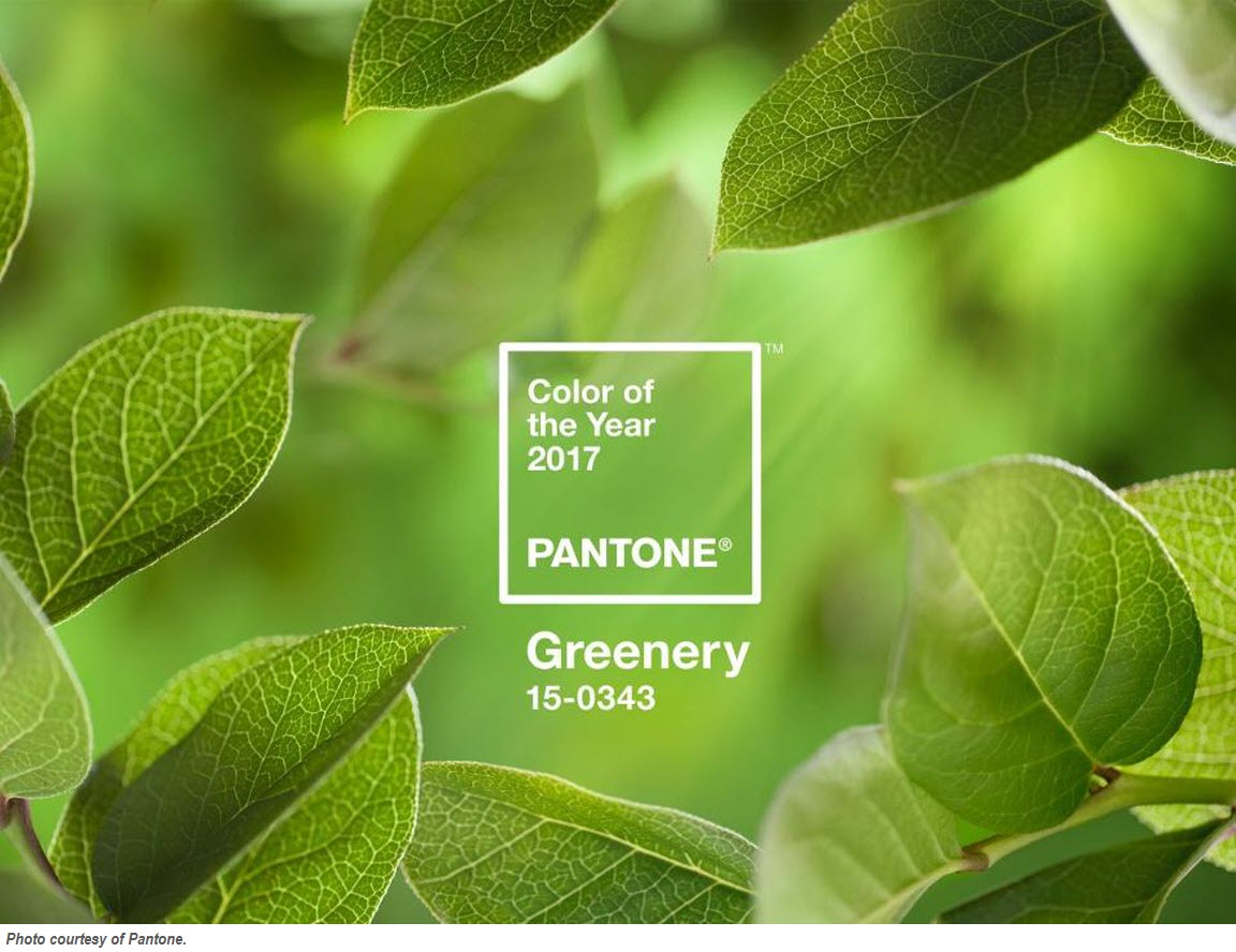 Pantone's Color of the Year 2017 – Greenery